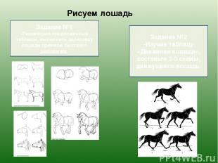 Рисуем лошадь Задание №1 -Рассмотрев предложенные таблицы, выполнить зарисовку л