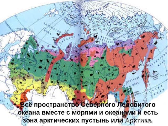 Всё пространство Северного Ледовитого океана вместе с морями и океанами и есть зона арктических пустынь или Арктика.