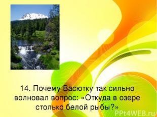 14. Почему Васютку так сильно волновал вопрос: «Откуда в озере столько белой рыб