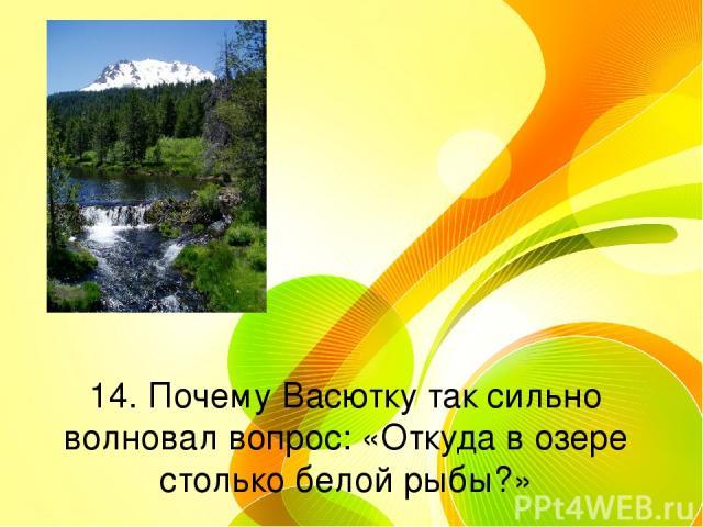 14. Почему Васютку так сильно волновал вопрос: «Откуда в озере столько белой рыбы?»