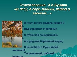 Стихотворение И.А.Бунина «В лесу, в горе, родник, живой и звонкий…» В лесу, в го