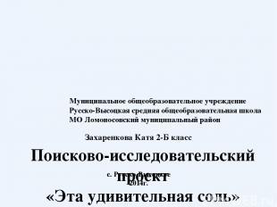 Муниципальное общеобразовательное учреждение Русско-Высоцкая средняя общеобразов