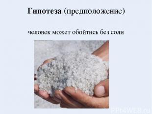Гипотеза (предположение) человек может обойтись без соли