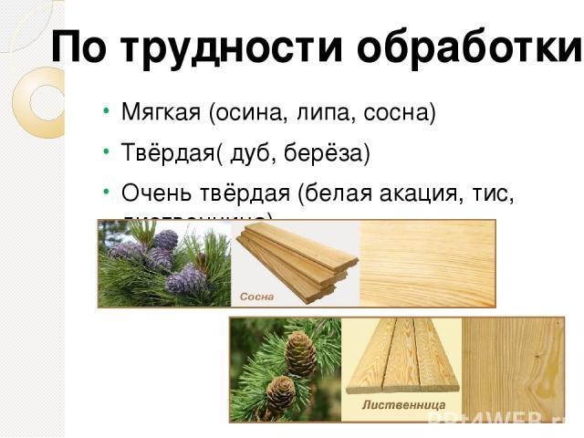 Качества древесины «+» Лёгкая Хорошо обрабатывается Легко склеивается Соединяется гвоздями, шурупами Имеет красивый внешний вид «-» Портится от сырости Коробится при высыхании Легко воспламеняется