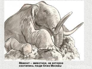 Мамонт – животное, на которое охотились люди близ Москвы