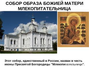 СОБОР ОБРАЗА БОЖИЕЙ МАТЕРИ МЛЕКОПИТАТЕЛЬНИЦА Этот собор, единственный в России,