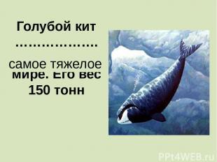 Голубой кит ………………. животное в мире. Его вес 150 тонн самое тяжелое