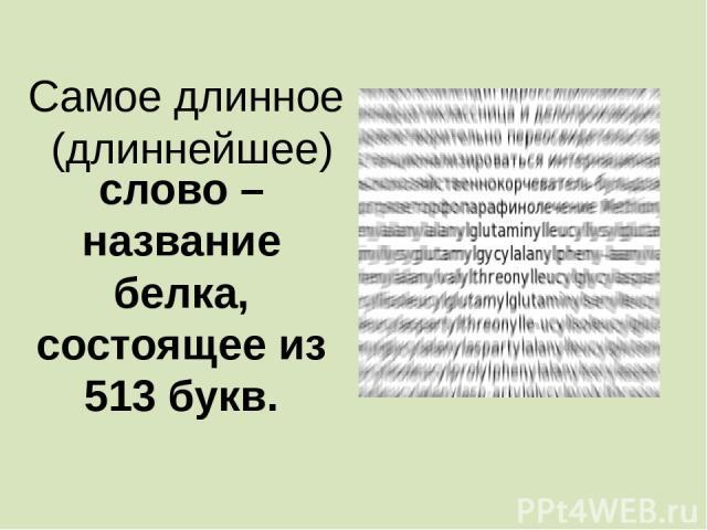 ………………………… слово – название белка, состоящее из 513 букв. Самое длинное (длиннейшее)