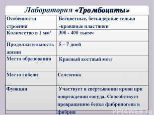 Лаборатория «Тромбоциты» Особенности строения Бесцветные, безъядерные тельца -кр