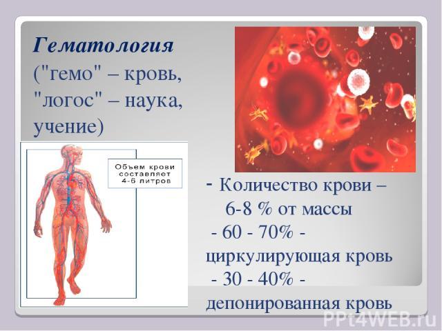 - Количество крови – 6-8 % от массы - 60 - 70% - циркулирующая кровь - 30 - 40% - депонированная кровь Гематология (