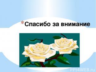 Источники: Контрольно-измерительные материалы к учебникам Т.А.Ладыженсткой, М.Т.