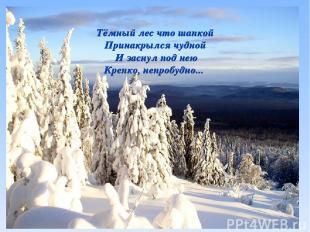 Тёмный лес что шапкой Принакрылся чудной И заснул под нею Крепко, непробудно...