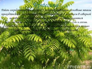 Древесина Район сосредотачивает около 1/3 ресурсов древесины. Основные запасы пр