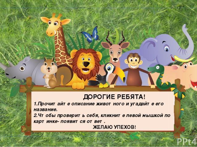 ДОРОГИЕ РЕБЯТА! 1.Прочитайте описание животного и угадайте его название. 2.Чтобы проверить себя, кликните левой мышкой по картинке- появится ответ. ЖЕЛАЮ УПЕХОВ!