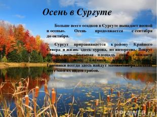 Осень в Сургуте Больше всего осадков вСургуте выпадает весной иосенью. Осень п