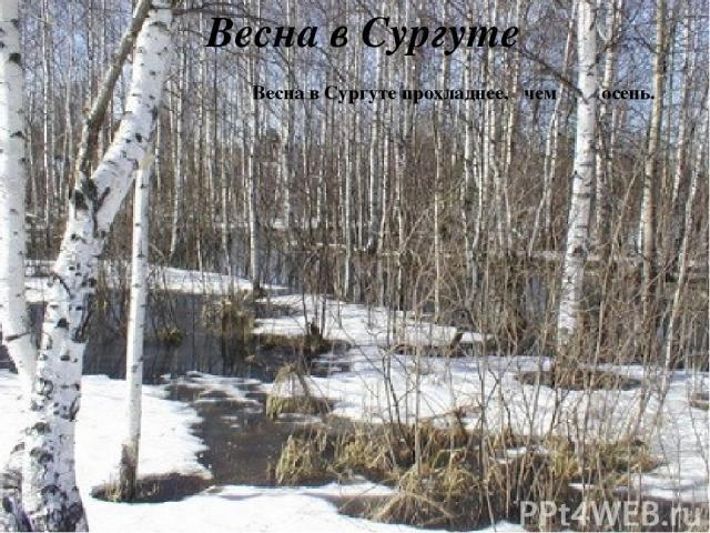 Весна в Сургуте Весна вСургуте прохладнее, чем осень.