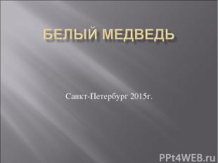 Санкт-Петербург 2015г.
