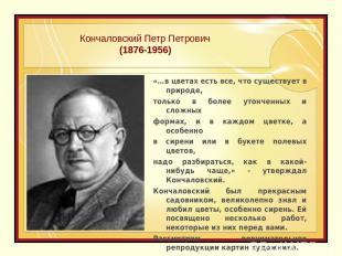 Кончаловский Петр Петрович (1876-1956) «…в цветах есть все, что существует в при