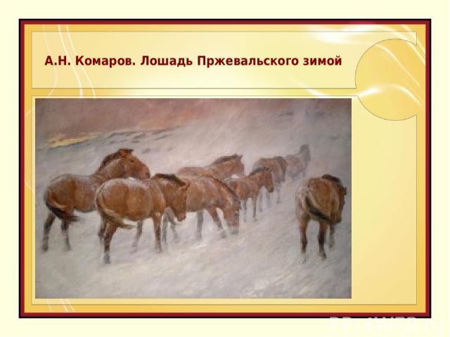 А.Н. Комаров. Лошадь Пржевальского зимой
