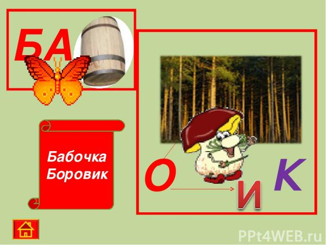 Бабочка Боровик БА О К