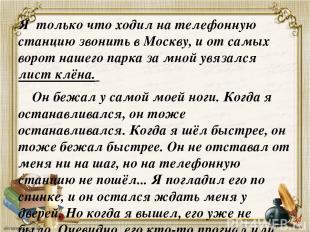 Я только что ходил на телефонную станцию звонить в Москву, и от самых ворот наше