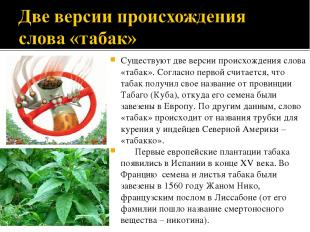 Существуют две версии происхождения слова «табак». Согласно первой считается, чт