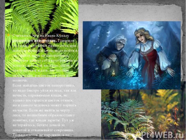 Считалось, что на Ивана Купалу расцветает папоротник. Говорили что тому, кто хочет разбогатеть при помощи нечистой силы, надо пойти в лес, найти заросли папоротника, очертить вокруг себя круг руками по воздуху и веткой по земле, сесть в центр круга …