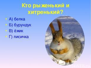Кто рыженький и хитренький? А) белка Б) бурундук В) ёжик Г) лисичка