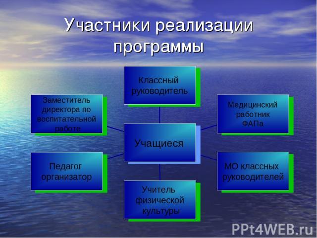 Участники реализации программы