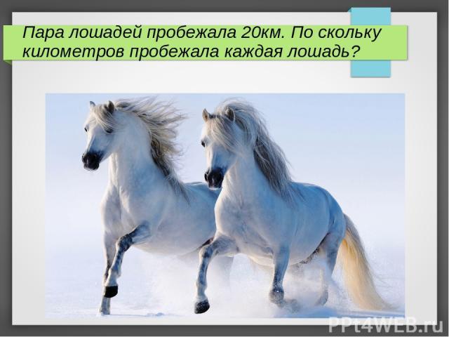 Пара лошадей пробежала 20км. По скольку километров пробежала каждая лошадь?