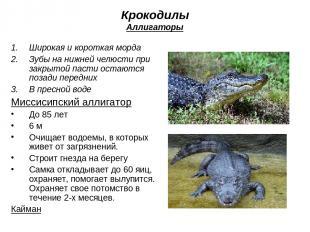 Крокодилы Аллигаторы Широкая и короткая морда Зубы на нижней челюсти при закрыто