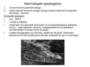 Настоящие крокодилы Относительно длинная морда Зубы нижней челюсти входят между