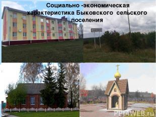 Социально -экономическая характеристика Быковского сельского поселения