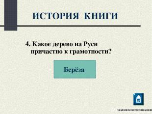 ИСТОРИЯ КНИГИ 4. Какое дерево на Руси причастно к грамотности? Берёза