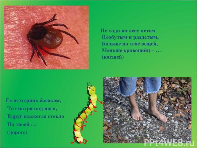 Если ходишь босяком, То смотри под ноги, Вдруг окажется стекло На твоей … (дороге) Не ходи по лесу летом Необутым и раздетым, Больше на тебе вещей, Меньше кровопийц – … (клещей)