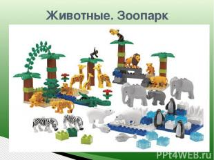 Животные. Зоопарк