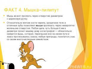 ФАКТ 4. Мышка–лилипут Мышь может пролезть через отверстие диаметром с шариковую