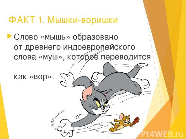 ФАКТ 1. Мышки-воришки Слово «мышь» образовано от древнего индоевропейского слова «муш», которое переводится как «вор».