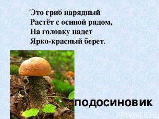 Это гриб нарядный Растёт с осиной рядом, На головку надет Ярко-красный берет. по