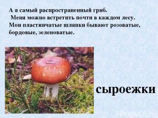 А я самый распространенный гриб. Меня можно встретить почти в каждом лесу. Мои п