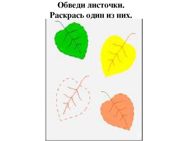 Обведи листочки. Раскрась один из них.
