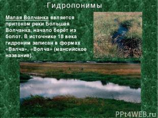 Малая Волчанка является притоком реки Большая Волчанка, начало берёт из болот. В