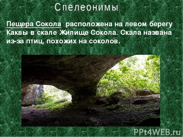 Пещера Сокола расположена на левом берегу Каквы в скале Жилище Сокола. Скала названа из-за птиц, похожих на соколов.
