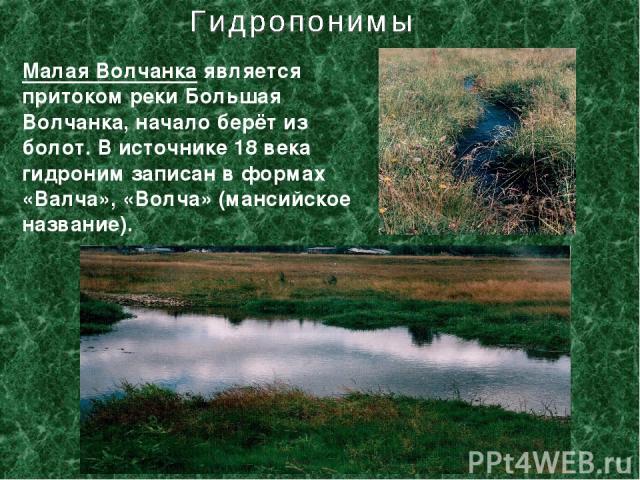 Малая Волчанка является притоком реки Большая Волчанка, начало берёт из болот. В источнике 18 века гидроним записан в формах «Валча», «Волча» (мансийское название).
