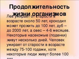 Продолжительность жизни организмов Лев умирает от старости в возрасте около 50 л