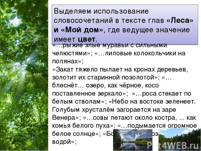 Выделяем использование словосочетаний в тексте глав «Леса» и «Мой дом», где ведущее значение имеет цвет. «…рыжие злые муравьи с сильными челюстями»; «…лиловые колокольчики на полянах»; «Закат тяжело пылает на кронах деревьев, золотит их старинной по…