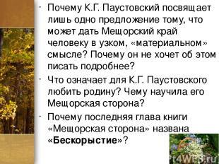 Почему К.Г. Паустовский посвящает лишь одно предложение тому, что может дать Мещ