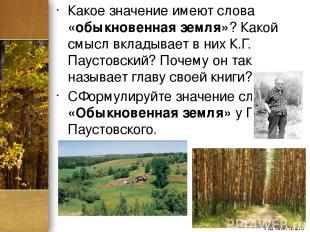 Какое значение имеют слова «обыкновенная земля»? Какой смысл вкладывает в них К.