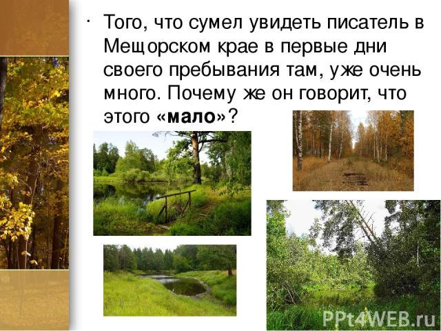 Того, что сумел увидеть писатель в Мещорском крае в первые дни своего пребывания там, уже очень много. Почему же он говорит, что этого «мало»? ProPowerPoint.ru