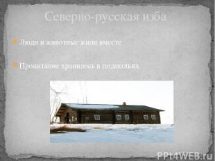 Люди и животные жили вместе Пропитание хранилось в подпольях Северно-русская изб